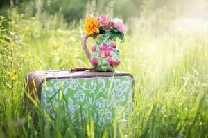 summer-still-life-785231_1280